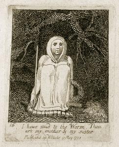 Verme nel suo lenzuolo funebre - W. Blake - 17 maggio 1793